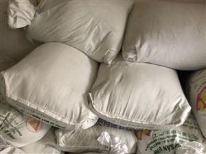 纯红薯粉十几万斤
