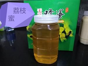 纯天然!高品质!实惠价!**农家土蜂蜜新鲜上市了!