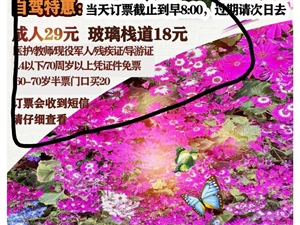 邹城康王花谷