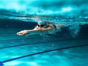 仁怀菲鱼游泳健身预售首年免费火热进行中