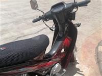 本人求购一辆二手弯梁摩托车,有意者联系,18419990192     15394048678
