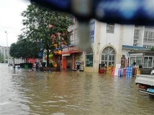 桃园新村屡次被淹,请物业管理及时处理,也请职能部门跟进!