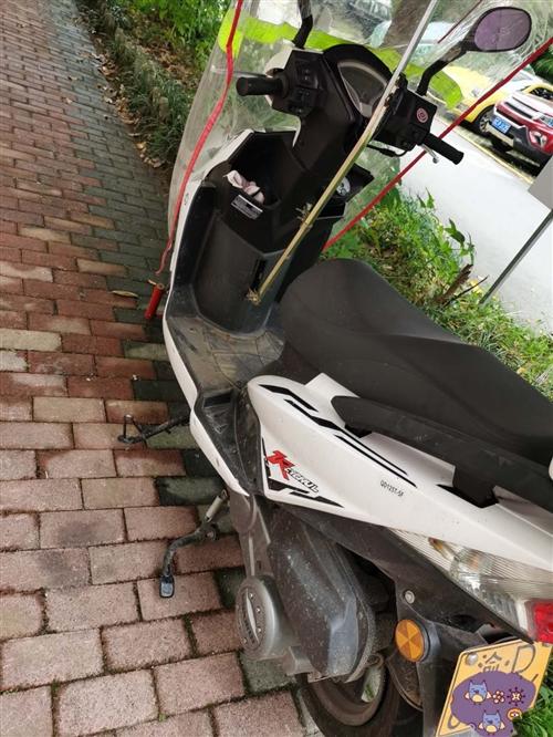 自用踏板摩托车出售,去年10月买的,证件齐全,必须过户,公里数3500多点,平时没怎么骑,车在双桥。
