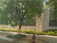 消防栓喷水