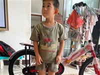 凤凰牌自行车,刚收到货,20寸,孩子有点小,不能骑,转手了, 适合6-12岁小朋友,需要的联系。