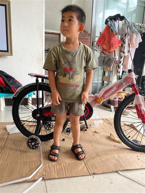 鳳凰牌自行車,剛收到貨,20寸,孩子有點小,不能騎,轉手了, 適合6-12歲小朋友,需要的聯系。