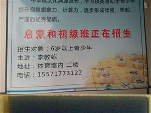 象棋培训招生-枝江市象棋协会青少年培训中心