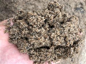水洗2.2沙