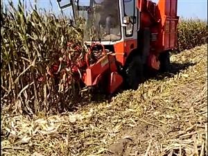 轉讓玉米收割機
