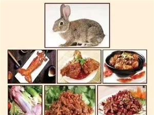 长期供应家兔