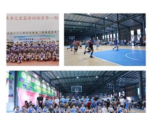 星锐体育篮球训练营
