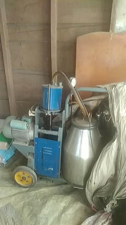 奶牛挤奶机,因不养奶牛了闲置家中有一年,买了没怎么用,有意者请联系