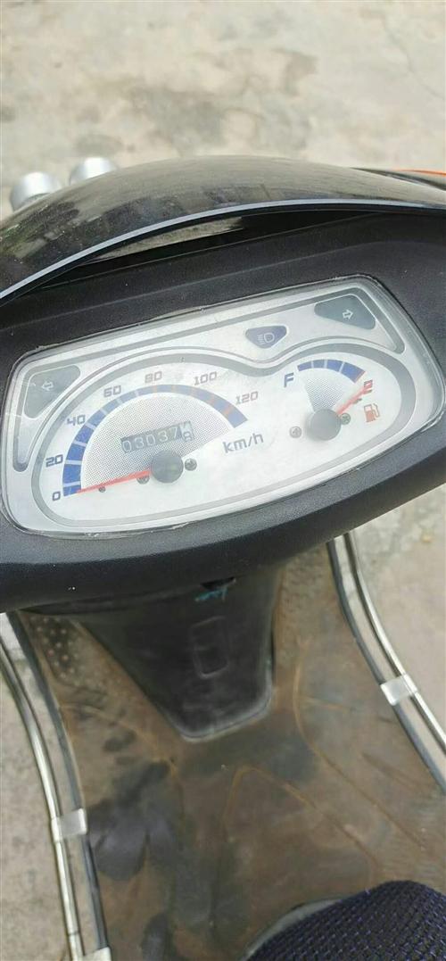 女装摩托  有证,有意需要来电或微信19806492169