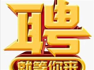 南昌电子厂招聘普工,技术工