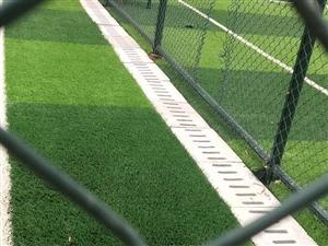 新建球场还未正式启用就惨遭破坏