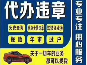 车辆,驾照