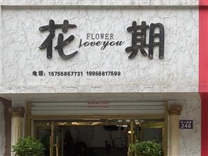 花期FLOWER
