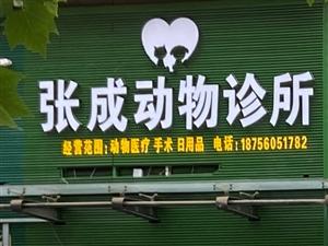张成动物诊所