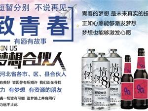 致青春酒业招募河北省各市、区、县合伙人啦