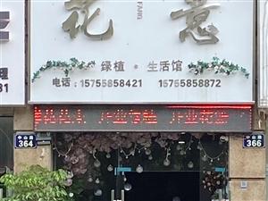 花意 绿植生活馆