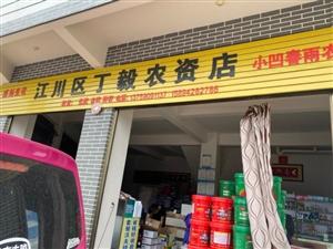 江川區丁毅農資店