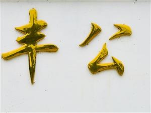 盐亭盛丰磷化工有限公司