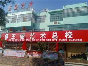 王丽艺术学校