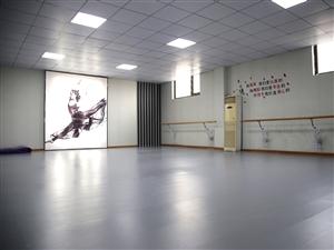 织梦舞蹈培训机构